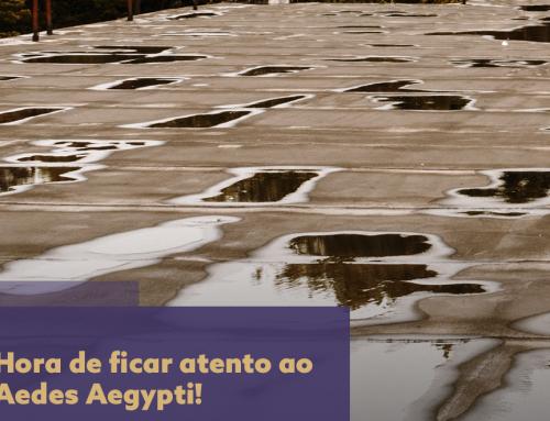 Condomínios: hora de ficar atento ao Aedes Aegypti!